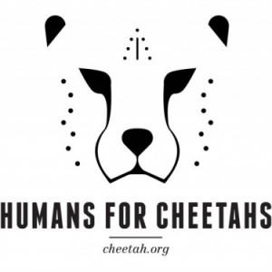CCF Fundraising