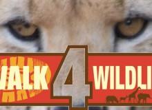 Walk4Wildlfe Cheetah Conservation Fund UK