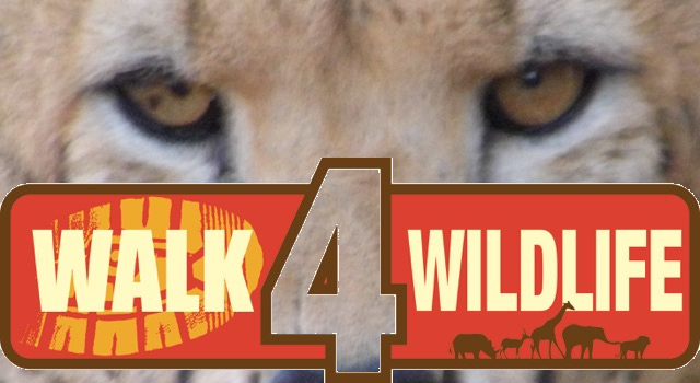 Walk4Wildlfe Cheetah Conservation Fund UK