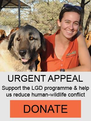 Donate Livestock Guarding Dogs