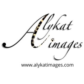 Alykat