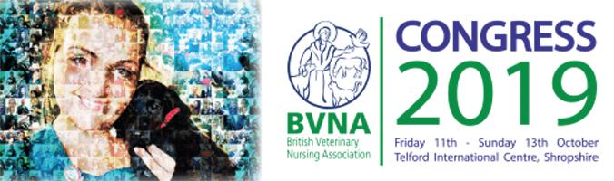 BNVA 2019